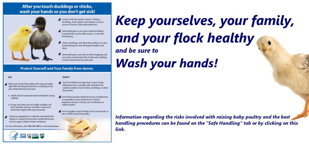 Wash your hands slide